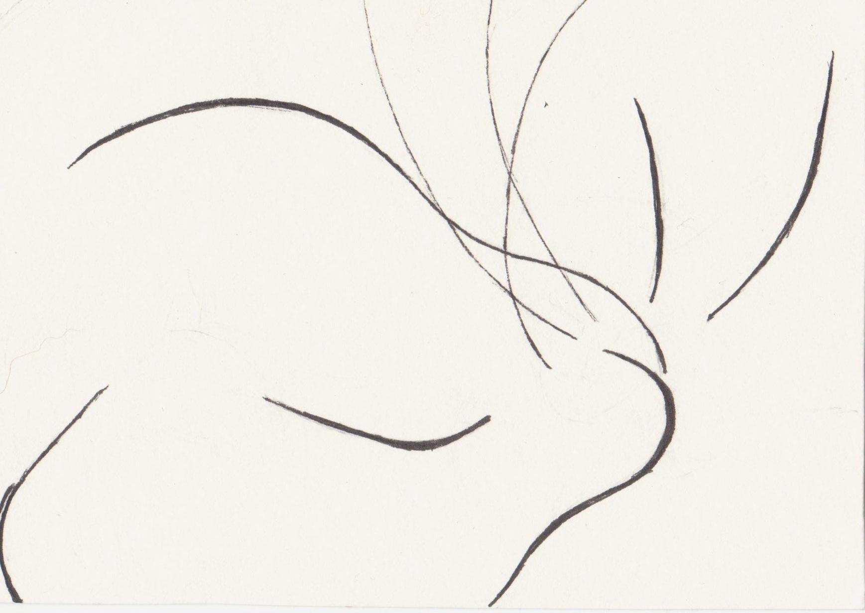 Line Art Of Cat : Line drawing karen bailey studio occasional artist