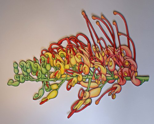 Grevillea 2 Reborn Sep 13 Coloured Pencil, Ink and acrylic Paint  50 x 70cm