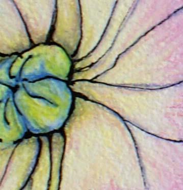 Hydrangea 2 - Detail