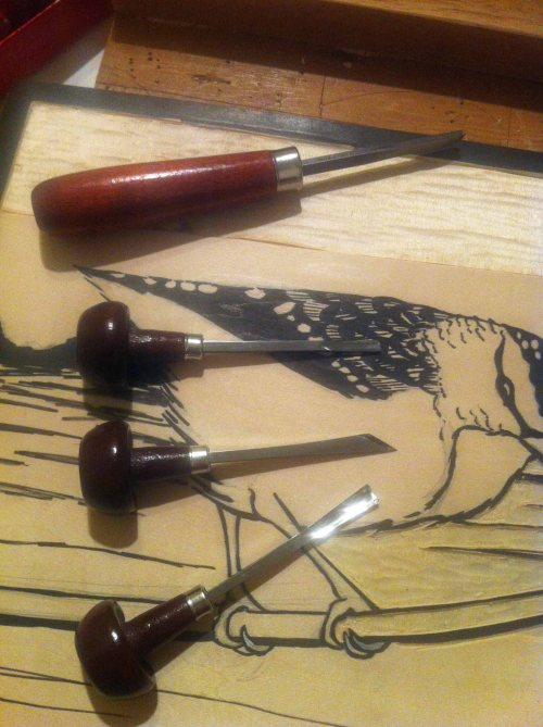 Carving the Pardalote