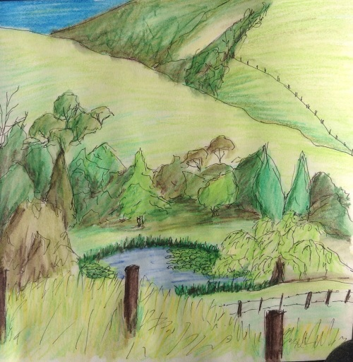 Pennyroyal Valley, Deans Marsh.  Ink and coloured pencil wash November 2013