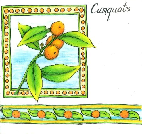 Cumquats Seasons of Colours