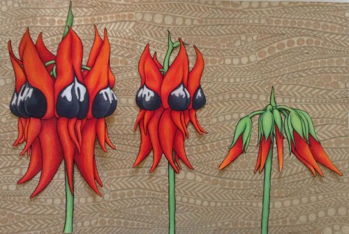 Sturt Desert Pea cut out on the pattern.