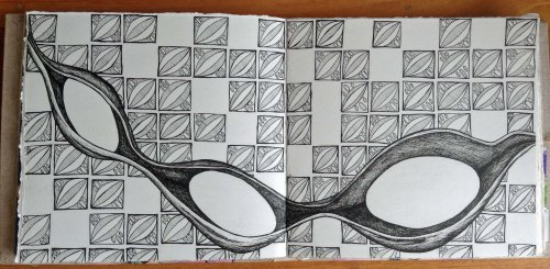 Coral Bean black and White.  Ink drawing in journal.