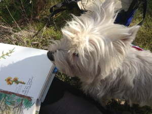 Hannah overseeing the sketching and wanting me to get moving again.