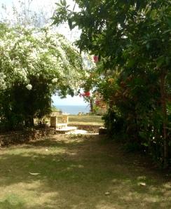 View from my villa Bingin