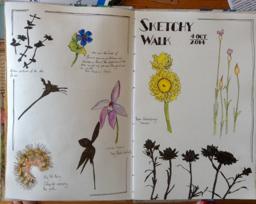 Wild Flowers Sketchy Walk Oct 14 Journal Page