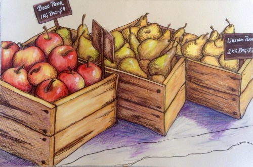 Fruit Harvest Ink and water colour Sketchbook