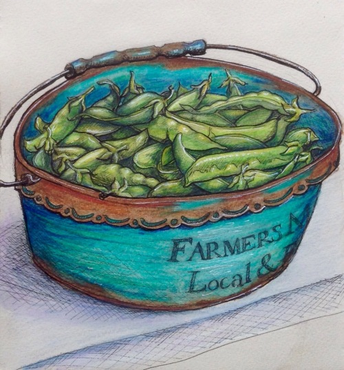 Fresh Peas Farmers Market Ink and Watercolour