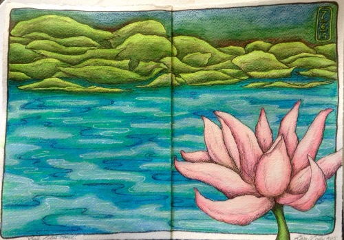 Lotus Pond - Bali.  Water colour, pencil and ink