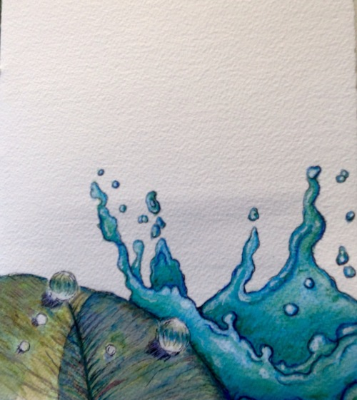 Splash, my contribution to the the front page  Water colour and ink