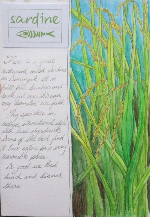 Sardine Page Journal Water colour and ink