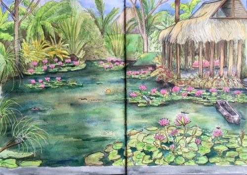Lily Pond at Sapu Lidi Resort Ubud.  Water colour and ink