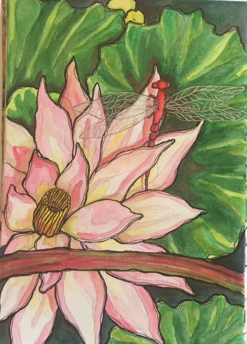 Water lily and dragonfly Water color pencil and ink Bali Journal 2015