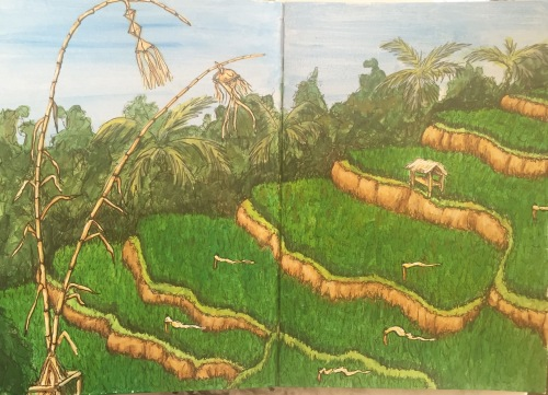 Rice Terraces Acrylic and ink. Bali Journal 2015