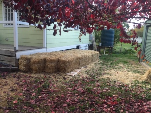 Start of the strawbale garden