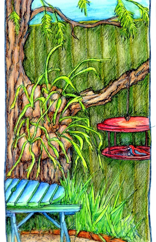 View From my door May 2016 Pen and water colour pencil